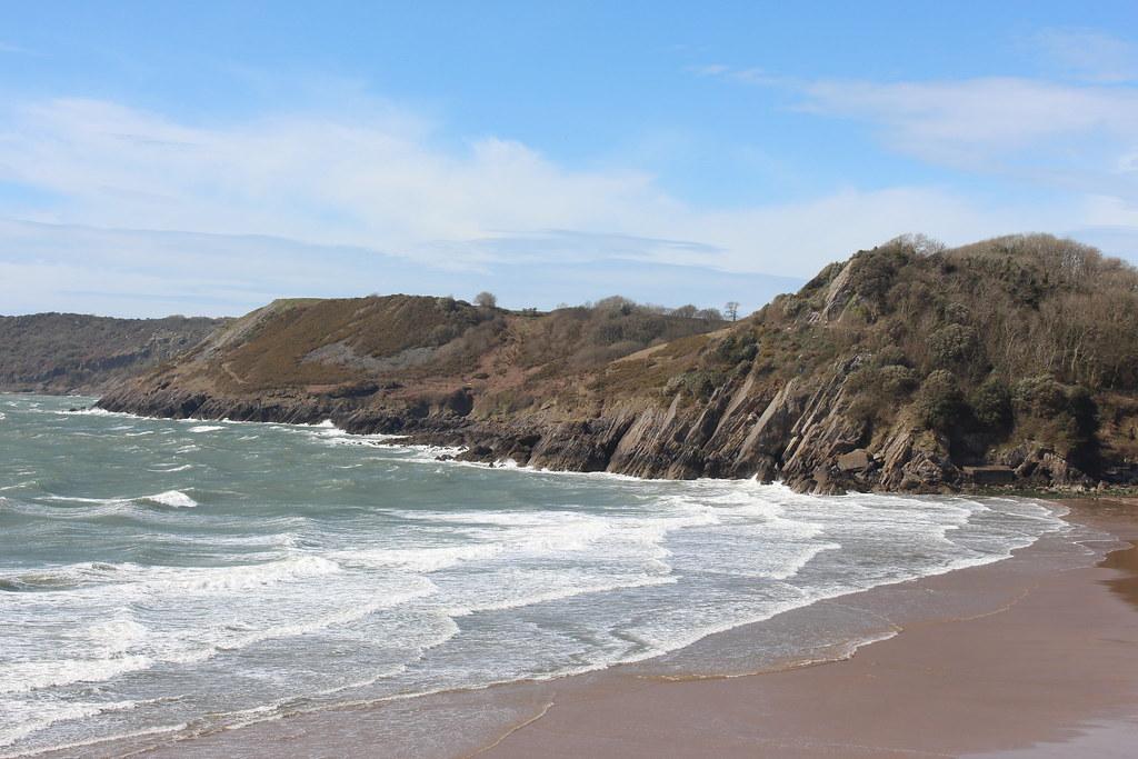 Dog Walking Swansea Beach
