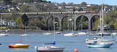 Belmond British Pullman (philwakely) Tags: train diesel plymouth rail railway trains pullman locomotive railtour railways saltash britishpullman class66 royalalbertbridge vsoe class67 belmond movingtrains