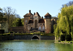 Chateau at Sercy (maureen bracewell) Tags: pink trees lake france spring burgundy historic chateau weepingwillow maureenbracewell sercy