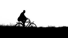 Lonely Cyclist (Eric Spies) Tags: blackandwhite bw white black holland blanco netherlands monochrome bicycle silhouette backlight contrast 35mm mono cycling nikon noir cyclist graphic zwartwit negro nederland bicicleta minimal solo sw biker monochrom minimalism dijk simple solitary bicyclette kontrast zwart wit weiss paysbas bianco blanc nero contrasts velo schwarz fahrrad dike fietsen olanda contrejour controluce dique silhouet solitaire fiets niederlande gegenlicht tegenlicht bicicletta radfahrer digue deich diga fietser radfahren kontraste radler minimalisme solitair minimalismus contrasten paesibassi scwarzweiss contrejourshot solitr d7100