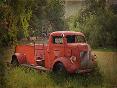 red truck in the weeds (Karol Franks) Tags: california ca old red ford texture abandoned truck vintage rust chrome yardart 1947 losangelescounty cabover aquadulce
