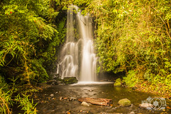 #Agua #Water #Waterfalls #Cascada (Photographs of Mauro) Tags: water agua waterfalls aire libre arroyo cascada