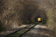 Illinois tree tunnel (Moffat Road) Tags: railroad trees train illinois sommer il 1750 locomotive prex hollis freighttrain kolbe mapleton treetunnel emd fp9 pioneerrailcorp keokukjunctionrailway kjry milepost120 formertpw