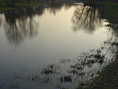 DSC01317 (kuzdra) Tags: sunset reflection water reflections evening eau soire paysage reflets      couchedesoleil rochefortsurloire lanjou