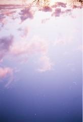 MY DEAR SKY (daniilzozulya) Tags: camera old sky love nature colors beautiful youth clouds vintage freedom amazing nikon purple belgium natural kodak couleurs young violet free iso amour 400 mauve asa sublime nuages f4 beau argentique argentic