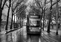 Avenio op lijn 17 Korte Voorhout (Gerard Stolk (vers l'Ascension)) Tags: tram denhaag haag streetcar trams thehague htm 5001 lahaye avenio kortevoorhout lijn17 straszenbahn