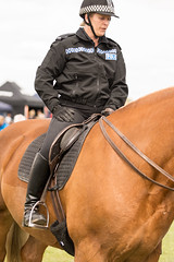 Thames Valley Police Rider (Andrew Bloomfield Photography) Tags: horse female police rider policehorse thamesvalleypolice andrewbloomfieldphotography wwwandrewbloomfieldphotographycouk