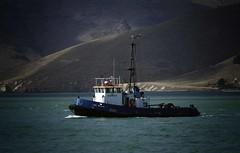 Lyttelton Harbour tug boat (mpp26) Tags: boat harbour tugboat tug lyttelton
