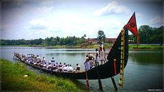 DSC_1773 (|| Nellickal Palliyodam ||) Tags: india race temple boat snake kerala lord pooja krishna aranmula avittam parthasarathy vallamkali parthan othera palliyodam koipuram poovathur nellickal jalothsavam