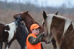 Seeing eye to eye (danalcreek) Tags: nikon boychild nikkor70300 d5100 horsepasturemountainkentuckyperrycountystripminecoalmines