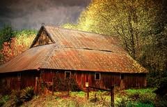 Old barn (Tina Stadeli) Tags: