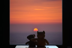 Eterna amistad (A. del Campo) Tags: friends sunset sea sky sun seascape sol window atardecer ventana mar nikon bears paisaje nikkor amistad d7000 nikond7000 ososdepelulche