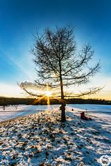 Waiting (MSPhotography-Art) Tags: schnee winter snow nature clouds germany landscape deutschland outdoor natur wolken sonnig landschaft wandern wanderung badenwrttemberg schwbischealb reutlingen swabianalb wintercontest