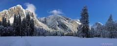 Yosemite Jan 2016 -14 (pjhaan) Tags: borderfx