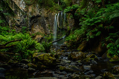 Hopetoun Falls (beautyinspyglass) Tags: longexposure green nature water beautiful forest waterfall nationalpark rainforest natural outdoor australia waterfalls stunning silky australianscenery theotways