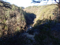 Tallulah Gorge State Park Rabun County Georgia (BenThomas1210) Tags: park county bridge trees nature tallulah georgia photographer state gorge rabun