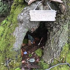 Fairy House (Ken Ronkowitz) Tags: christmas woods nj fairy fairies fairyhome eaglerockreservation
