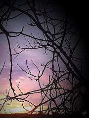 Couleurs du soir (cordier38) Tags: couleurs soir