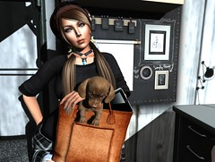"They call it..""Puppy Love""... (Punki`s Fashion Passion) Tags: bueno romp spellbound treschic maitreya darkpassions vanityhair catwa dieselworks serenitystyle suicidalunborn kustom9 22769bauwerk sanarae kendrasycreations besomoutfitters amarabeauty"