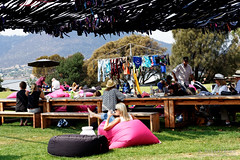 20160126-15-MONA lawns (Roger T Wong) Tags: lawn australia mona tasmania hobart 2016 sony2470 museumofoldandnewart rogertwong sel2470z sonyfe2470mmf4zaosscarlzeissvariotessart sonya7ii sonyilce7m2 sonyalpha7ii