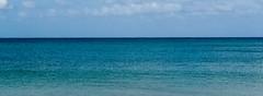 Mar Caribe (Races annimas) Tags: costa arbol atardecer mar colombia pescador caribe pescar pelcano islafuerte arbolquecamina