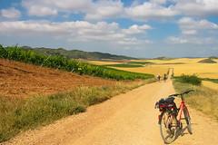 Semper Fidelis! (Lagavulin2) Tags: 2005 espaa paisajes primavera explore cereales bicicletas caminodesantiago navarra viedos flaga ph232 canonixus300 villamayordemonjardin lneasdefuga pamarillo merindaddeestella
