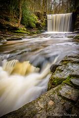 Nant Mill Wood. Feb 2016-29-10.jpg (revpdwilson) Tags: water wales landscape waterfall naturallight slowshutterspeed northwales nikon28300mmvr nikond750 lightroom6 nantmillwood
