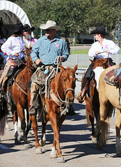 Trail Riders (wyojones) Tags: horse girl hat wagon cowboy texas boots houston rope parade cowgirl cowboyhat saddle trailride houstonlivestockshowandrodeo wyojones houstonlivestockandrodeoparade