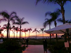 P1000083 (dudegeoff) Tags: twilight january sunsets palmtrees coronado hoteldelcoronado oceanviews thedel 2016 beachviews 20160113coronadowithchrisandlizzie