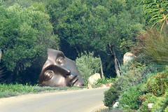 Bronze Head (RobW_) Tags: sculpture bronze southafrica march estate wine head saturday hidden valley stellenbosch westerncape 2016 05mar2016