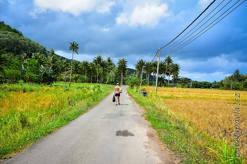 Pavel-Pavla_Tip_of_Borneo-0178.JPG