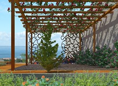 Minimalist Garden. back perspective view 2