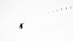 Read the signs, follow no path (Frank Busch) Tags: winter white snow mountains fence austria skier zillertal penken finkenberg frankbusch wwwfrankbuschname photobyfrankbusch frankbuschphotography imagebyfrankbusch wwwfrankbuschphoto