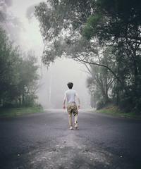 Into the Fog (Chris Gray Photo) Tags: trees portrait mist selfportrait nature fog canon australia bluemountains portraiture conceptual expansion 24105mm