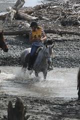 IMG_EOS 7D Mark II201604030571 (David F-I) Tags: horse equestrian horseback horseriding trailriding trailride ctr tehapua watrc wellingtonareatrailridingclub competitivetrailriding sporthorse equestriansport competitivetrailride april2016 tehapua2016 tehapuaapril2016 watrctehapuaapril2016