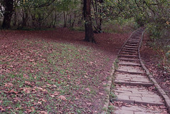The Granny Steps (Walt Jabsco) Tags: film bristol kodak pentaxk1000 expired pushedfilm eastvillepark expired0804 november2015 kodakcolourplus 200pushedto800 grannysteps