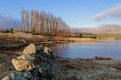 Kirriereoch (Antony Fleming) Tags: wall scotland galloway lochan kirriereoch d7100