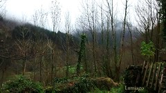 Un lugar para descubrir (Cantabria) (Lumiago) Tags: espaa naturaleza spain paisaje niebla cantabria portilla vallespasiegos esenciadelanaturaleza