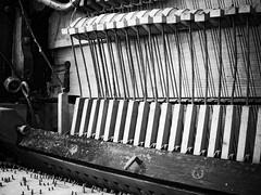 Musique mcanique 2 (steph20_2) Tags: bw white black monochrome lumix noir noiretblanc ngc panasonic 20mm monochrom blanc musique m43 gh3 skanchelli