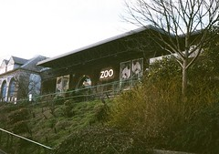 op - edinburgh zoo (johnnytakespictures) Tags: building film nature animals pen zoo scotland lomo lomography edinburgh natural entrance olympus analogue halfframe entry ee3 lomographycn400