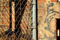 revs (Luna Park) Tags: nyc ny newyork graffiti tag revs tags lunapark