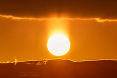 Solar Bed Head (inlightful) Tags: sunset sky orange sun sol sunshine yellow clouds sunrise solar rays sunrays sunbeams sunpillar lightpillar atmosphericphenomena