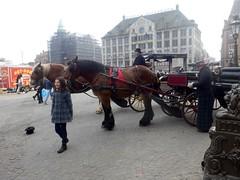 Paardenkoets004 (Quetzalcoatl002) Tags: horse amsterdam coach dam horsedrawn damsquare paardenkoets koetsjes