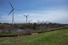Wind-power generation (shin4433) Tags: blue sky mountain snow lens landscape wideangle generation windpower