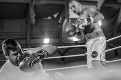 White Collar Boxing (sophie_merlo) Tags: blackandwhite bw sports sport mono action candid photojournalism documentary boxing johnsmith photodocumentary