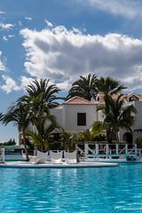 Parque Santiago III (Fjola Dogg) Tags: park vacation holiday water pool canon island hotel spain europe palm palmtrees tenerife evropa sundlaug gisting parquesantiago3 evrpa plmatr canonpowershotg7x canong7x