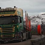 Scania R560 V8 thumbnail