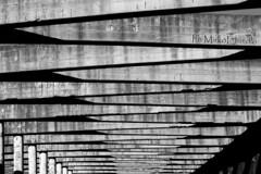 (PH MirkoEmmolo) Tags: world road city travel light summer bw italy white house black green car yellow cane canon eos photo europe strada italia photographer luna ombre works sicily mm 50 lente colori stazione viaggi bianco nero amore viaggio bianconero luce sicilia biancoenero sud cannoli mirko cavalletto picofday diaframma arancini ottica canonphotography cinquantino canonclub canonitalia canonclubitalia canon600d emmolo eos600d canoneos600d canon50mmstm mirkoemmolo 50mmstm phmirkoemmolo phomirkoemmolo