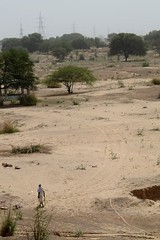 Lone Walker (cn174) Tags: life travel india countryside daily jaipur ranthambore ranthambhore