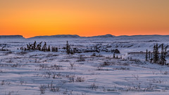 Before the sunrise_O1A7742 (Mathieu Dumond) Tags: morning blue trees sky orange snow canada sunrise river spring hills arctic april nunavut spruce willows tundra coppermine kugluktuk mathieudumond umingmakproductions earthdayphotoproject2016
